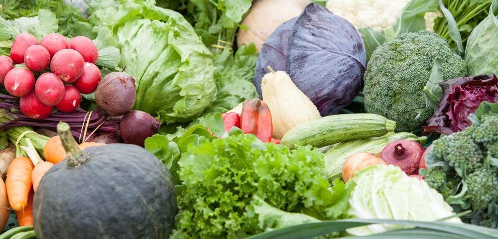 verduras-e-legumes